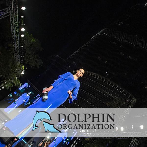 Dolphin dating software di social network